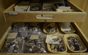 Artifacts recorded and stored in the Nova Scotia Museum of Natural History archeology collection.