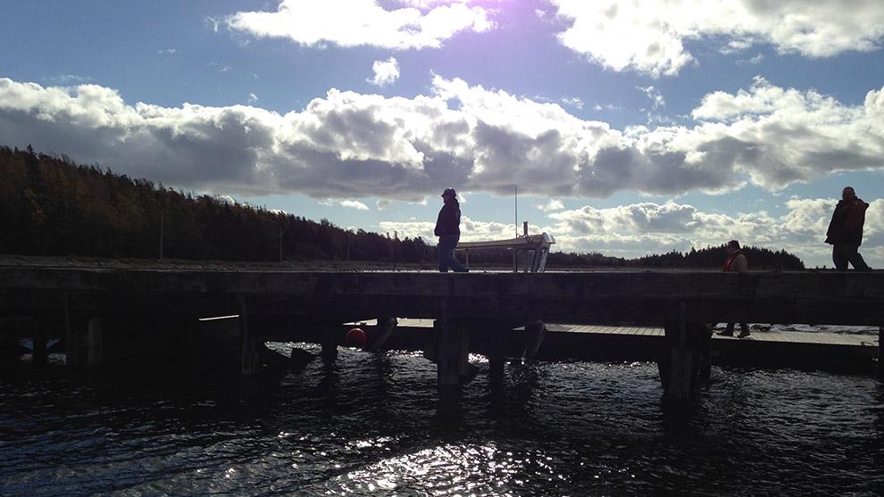 Wharf at McNab's Island