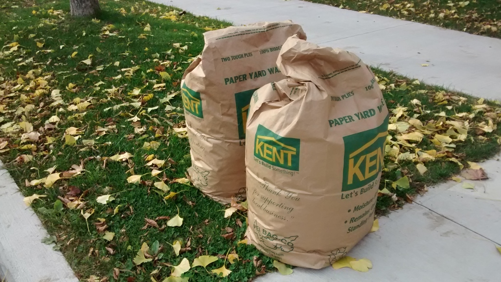 Some Halifax homeowners were lucky enough to buy leaf bags before most stores ran out.