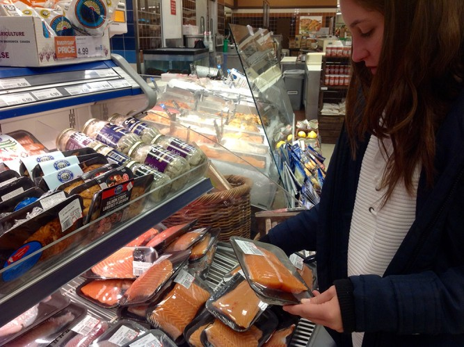 Ecological groups worry that without sufficient public notice and adequate assessment, genetically-modified salmon could end up in Canadian supermarkets.