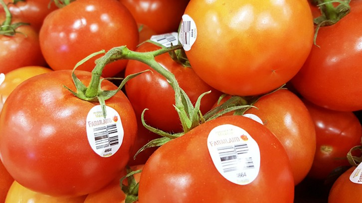 Tomatoes are a seasonal fruit and most abundant during the spring and summer months.