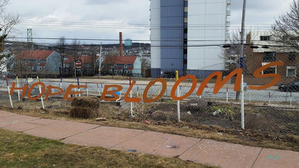 Gate of Hope Blooms Garden in North Halifax.