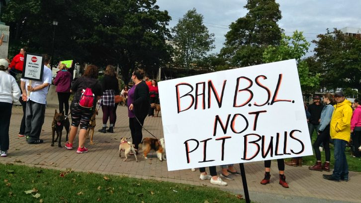 Pit bull supporters gather in Cornwallis Park on Saturday