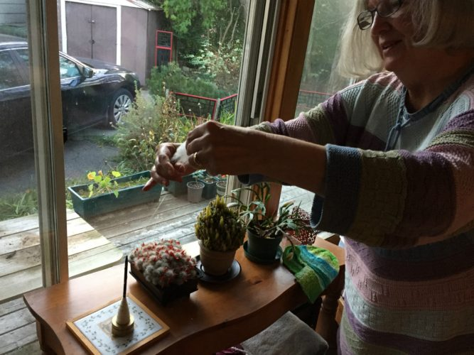 Corrie Watt spins her yarn at her home in Halifax.