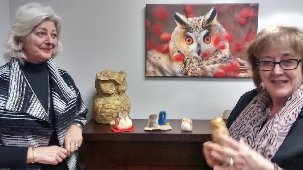 Katherine MacFarlane (left) and Chris Rankin (right) show the collection of owls given to them by graduates of the Older Wiser Labour Force program.
