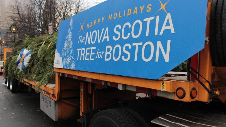 The annual Tree for Boston stopped in Halifax before the next leg of it's journey to Boston.