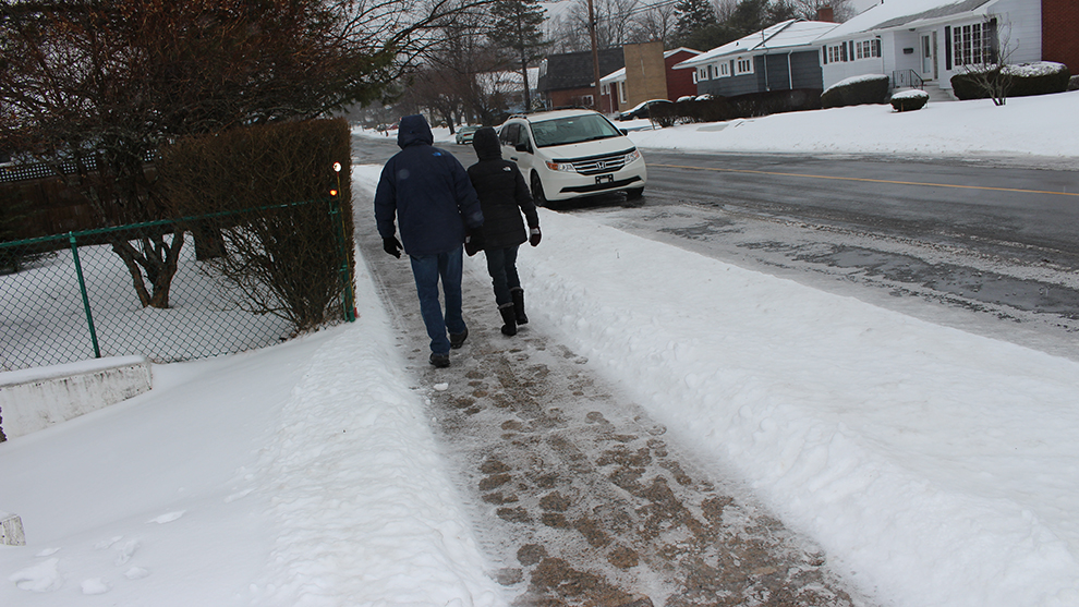 It was a snow day for schools in HRM on Wednesday, which offers opportunities for more than just students.