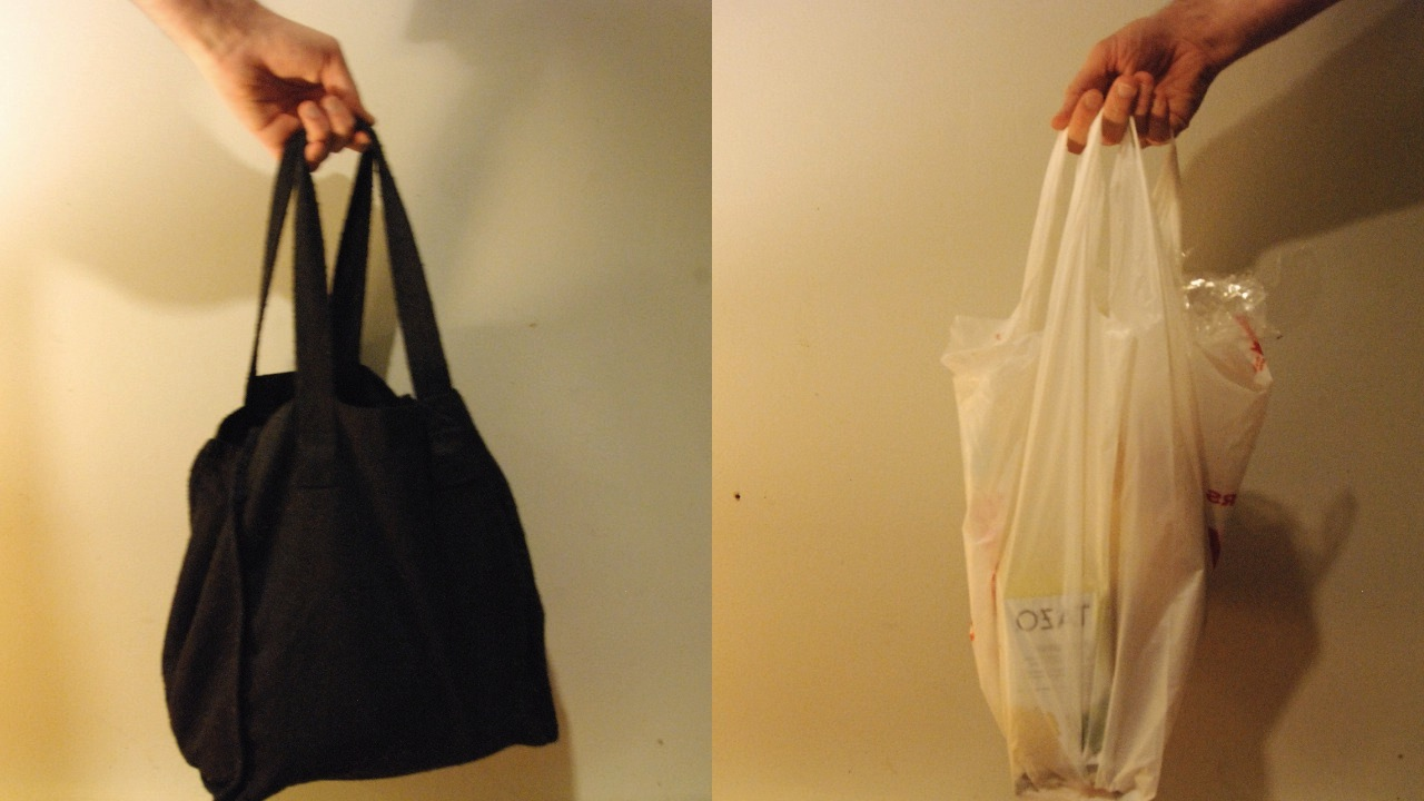 Councillors voted in favour of a report looking into the effect of plastic bags Thursday.