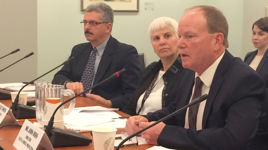 (Right to left) John Ross, Julie Towers and Walter Fanning at a standing committee for natural resources.