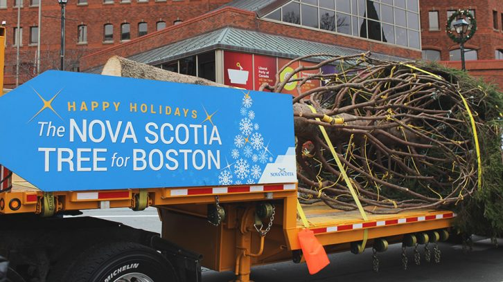 The Tree for Boston arrives in Halifax to make it's trip to Boston