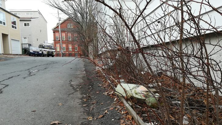 A discarded plastic bag on Chebucto Lane in Halifax.