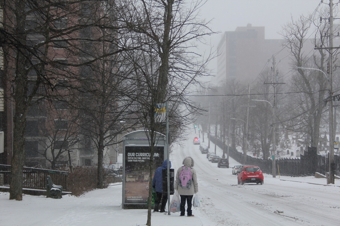 People wait at the bus stop on Robie Street. Some bus routes were on snow plan.