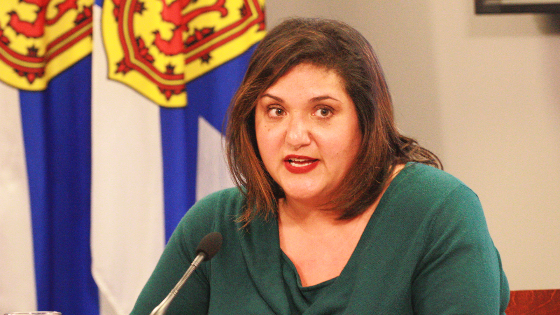 Minister of Internal Services Patricia Arab speaking at Tuesday's news conference.