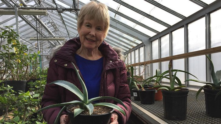 Elise Doane poses with her new agave plant at the greenhouses near the Public Gardens.