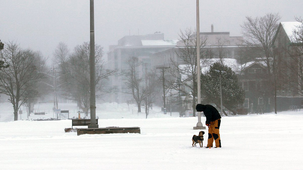 It's quiet at Dalhousie University. The school is closed Wednesday because of a storm.
