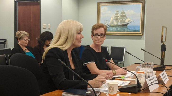 Michele Saran (left), CEO of Tourism Nova Scotia, answers questions on Aribnbs from MLAs on Tuesday.