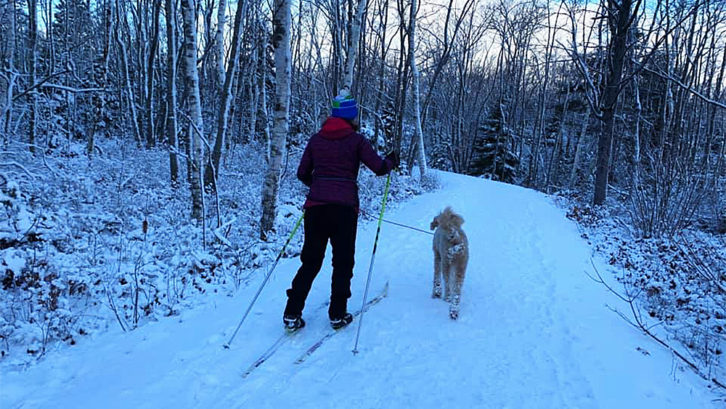 The Halifax Nordic Ski club offers access to six parks across the municipality. Lorenzo Caterini hopes the grass trail at Oakfield will lead to a longer season.