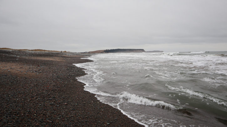 Lawrencetown Beach in the winter.