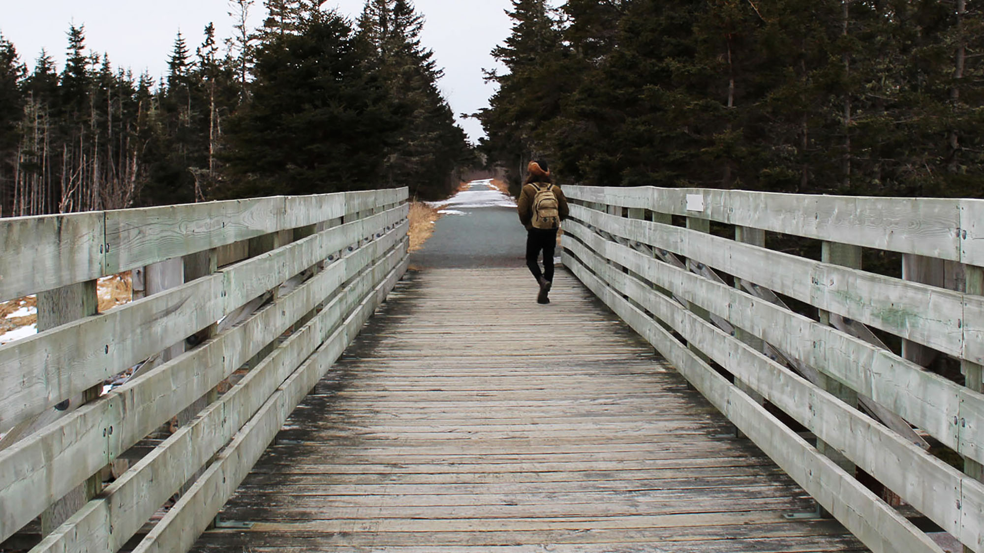 Man walks along the Atlantic View Trail in Lawrencetown, NS.