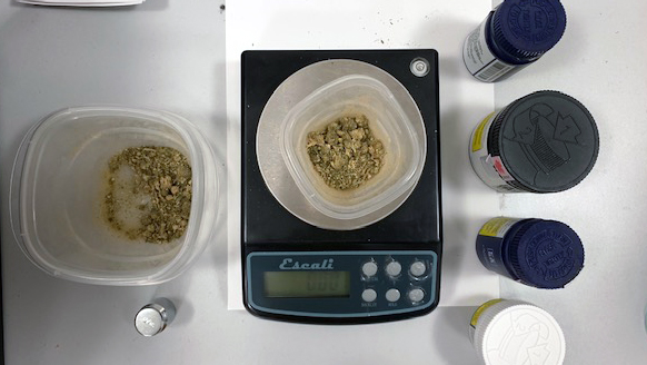 Cannabis being tested in the research lab.