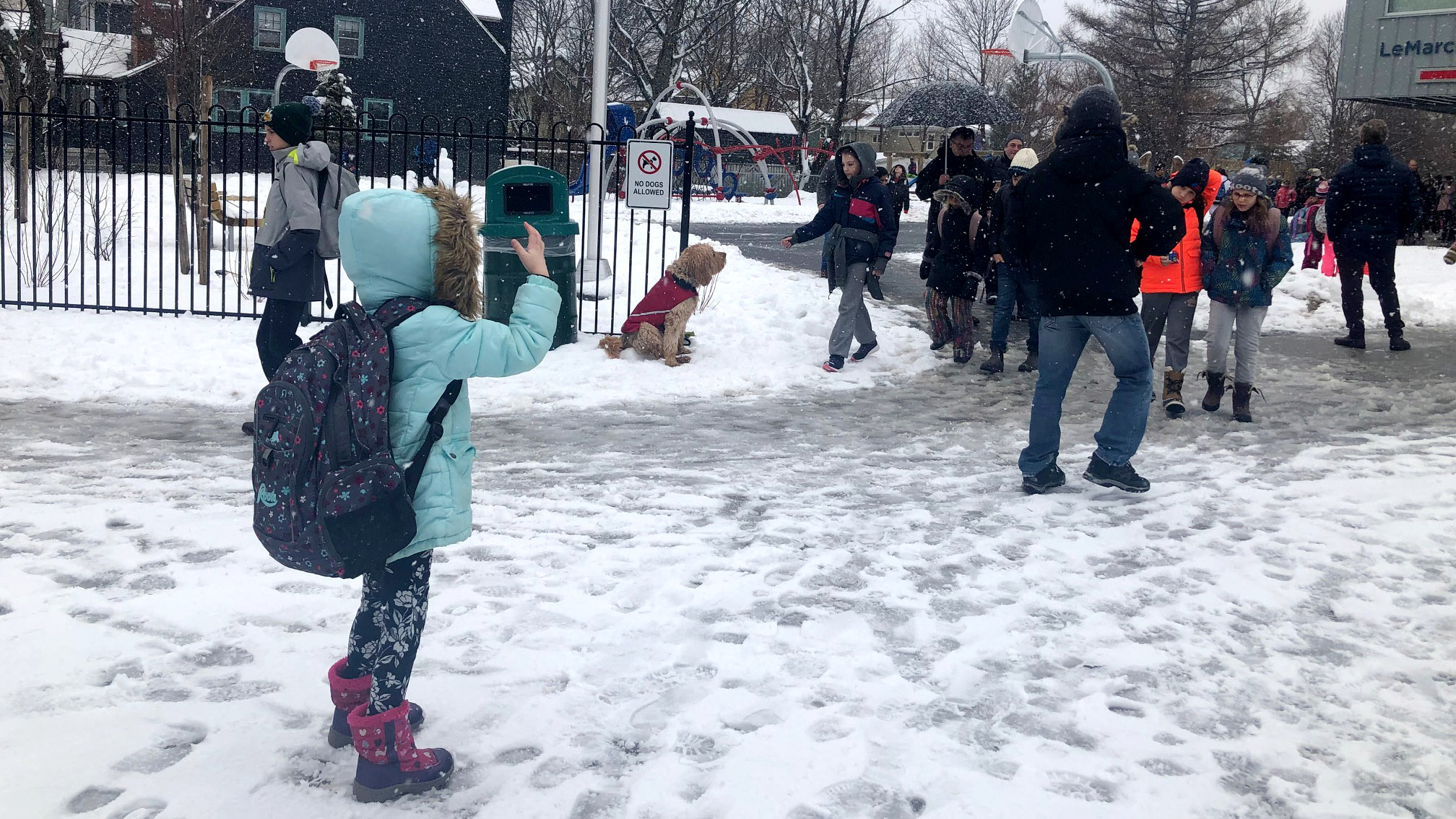 Parents flocked to LeMarchant-St. Thomas Elementary at noon to pick up their children.