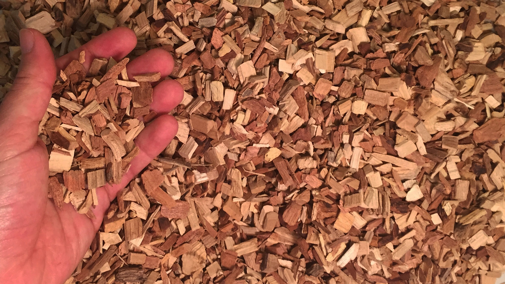 Wood chips will be burned in a biomass boiler to heat buildings.