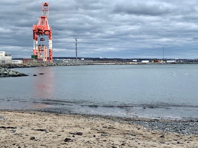 A shot of the Black Rock Beach at Point Pleasant Park, Halifax, NS.