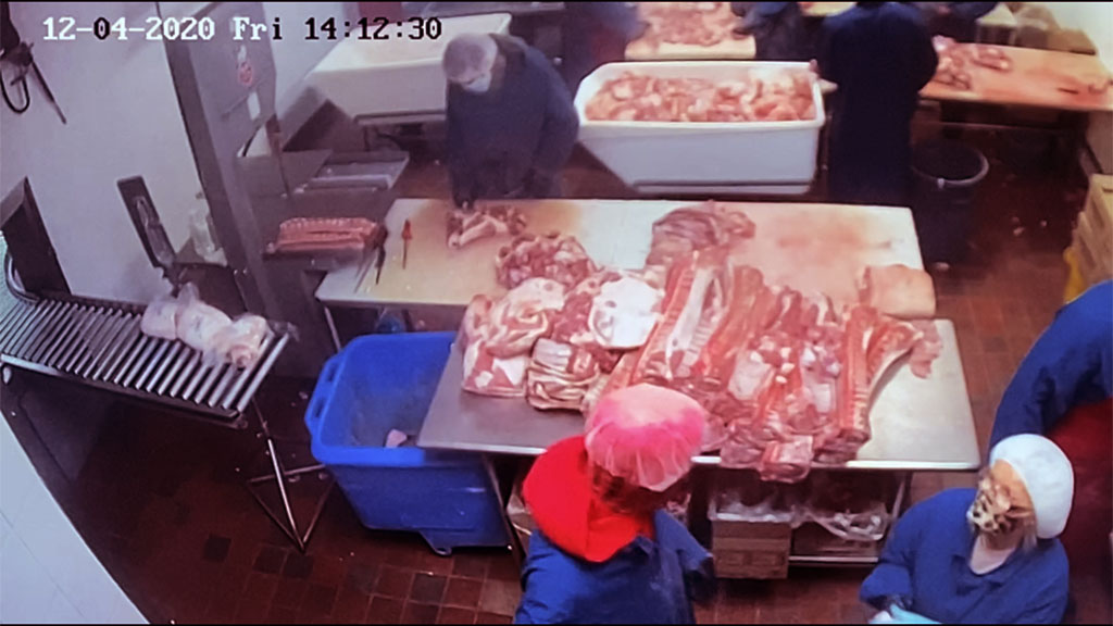 Screenshot of a surveillance camera streaming live at Weston abattoir in Windsor, Ont.