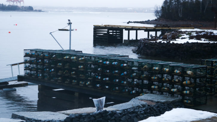 A stack of fishing traps organized on a dock in Purcell's Cove.